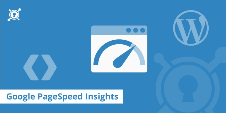 Google PageSpeed ​​Insights – Scoring 100/100 con WordPress